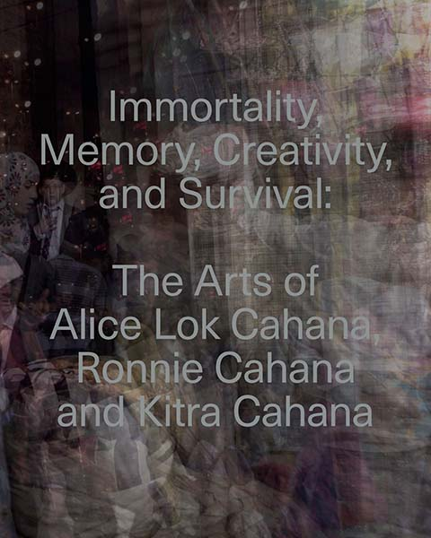 Immortality, Memory, Creativity, and Survival